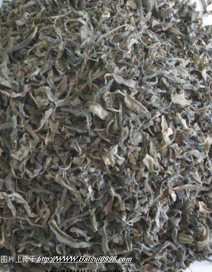 新疆特產羅布麻茶全國貨到付款