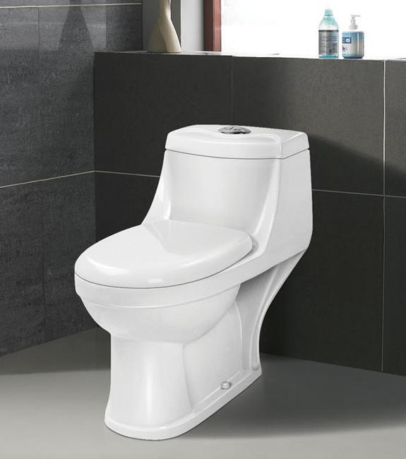 恒麗潔 衛浴潔具8001